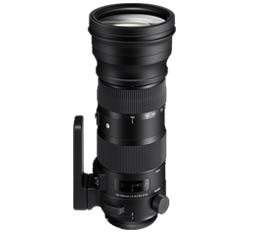 Sigma 150-600mm f5-6.3 DG OS HSM Sport (Canon)