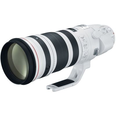 Image of Canon EF 200-400mm F4L IS USM Extender 1.4x