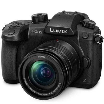 Image of Panasonic DMC-GH5 w/ 12-60mm F2.8-4.0 Power OIS Lens (Micro Four Thirds)